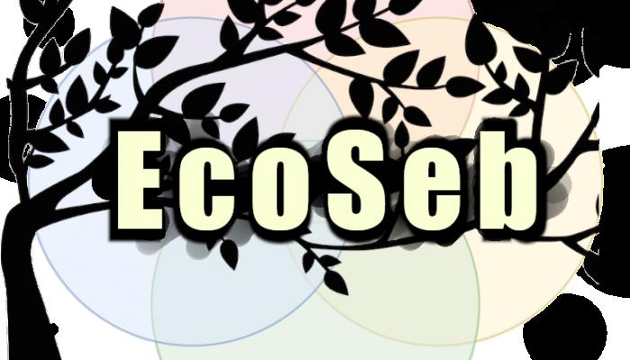 ecoseb 12 - transparent